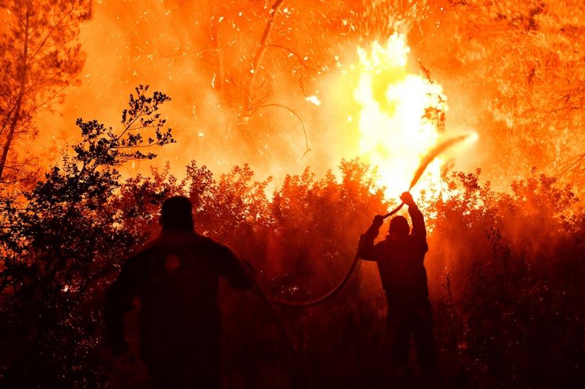 Φωτιά στον Σχίνο: Δύσκολες ώρες για τους κατοίκους - Το χρονικό της καταστροφής και η δεύτερη νύχτα τρόμου