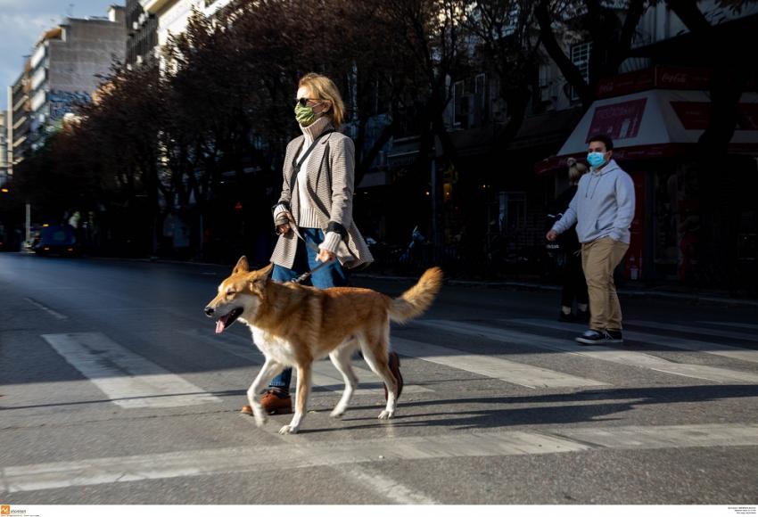 Απαγόρευση κυκλοφορίας: Τα έγγραφα - βεβαίωση για βόλτα με κατοικίδιο και εργασία